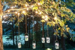 Fairy Lights on the Tree