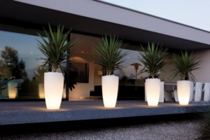 Flower Pot with Lights
